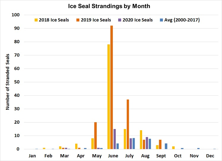 Graph of  Ice Seal Strandings by Month