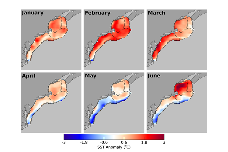 Maps of the Northeast U.S. continental shelf showing 2020 monthly sea surface temperature differences from the long-term 1981-2010 temperature baseline.  The images show that temperatures were above normal in January, February, March throughout the region, near average in April, below average in the Mid-Atlantic and offshore southeast of Georges Bank in May, and above average in the Gulf of Maine in June.