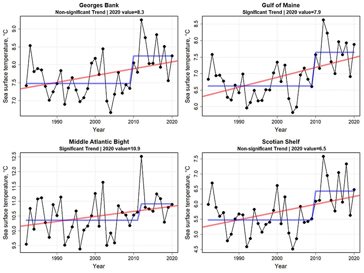 Graphs showing sea surface temperature for the first six months of the year from 1982 to 2020. Sea surface temperatures continued to be at high levels in all ecoregions. However, thermal conditions have become more moderate since the record high temperatures observed in 2012. There appears to have been a change point in temperature starting in 2010.