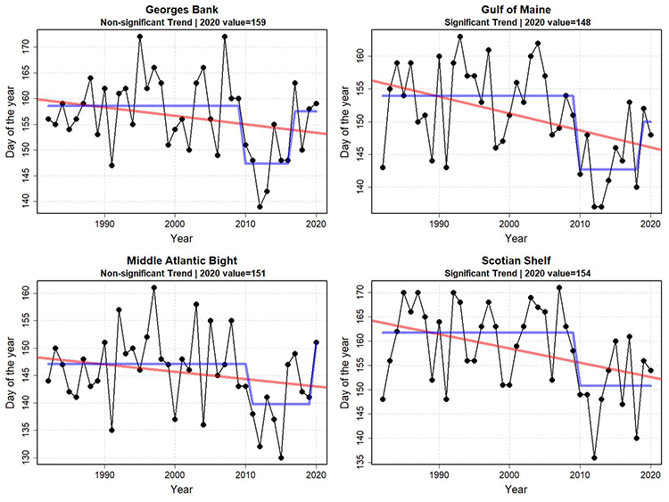 Graphs showing fall temperature transition date from 1982 to 2029. The spring thermal transition date was relatively constant from 1982 to approximately 2010 for the Northeast Shelf ecoregions. A change point appears around 2010, when the spring transition date advanced approximately two weeks. In recent years, the trend toward earlier spring transition dates appears significant in the Gulf of Maine and Scotian Shelf ecoregions.