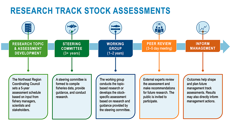 The steps involved in research track stock assessments to evaluate the overall health of a fishery and inform management decisions. There are separate sections for each step of the process from left to right with corresponding green, blue, and orange colors, small icons, and short descriptions.
