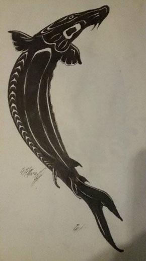 Sturgeon drawing by Pamunkey Indian Tribe member, Kirk Moore.