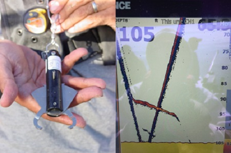 Figure 9 shows a descending device and a screen shot from a depth plotter that shows a weighted fishing rod line with a rockfish attached to the line descending to the seafloor bottom and shows the fish releasing at approximately 90 feet of depth and the fish swimming the rest of the way to the bottom.