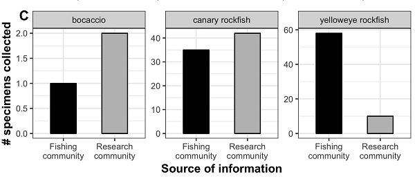 Figure 2 show the number of ESA-listed rockfish collected at sites recommended by the local recreational fishing or scientific research communities (Andrews et al. 2019). This shows that we were able to collect twice as many bocaccio and slightly more canary rockfish at sites recommended by the scientific research community, while we were able to collect almost four times as many yelloweye rockfish at sites recommended by the recreational fishing community.