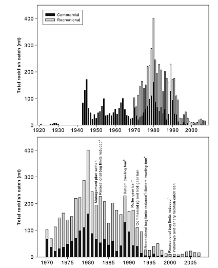 The top panel of Figure 1 shows the estimated commercial and recreational catch of rockfish from Puget Sound, 1920-2007. Commercial fishing for rockfish peaked several times from 1945 to 1990 and then going to nearly zero by 2000. Recreational fishing for rockfish was heavy from the 1970's thru the early 1990's and then dramatically declined through the 2000's. The bottom panel of Figure 1 shows rockfish catch data with overlay of key regulation changes from 1970-2007. The first rockfish management plan was