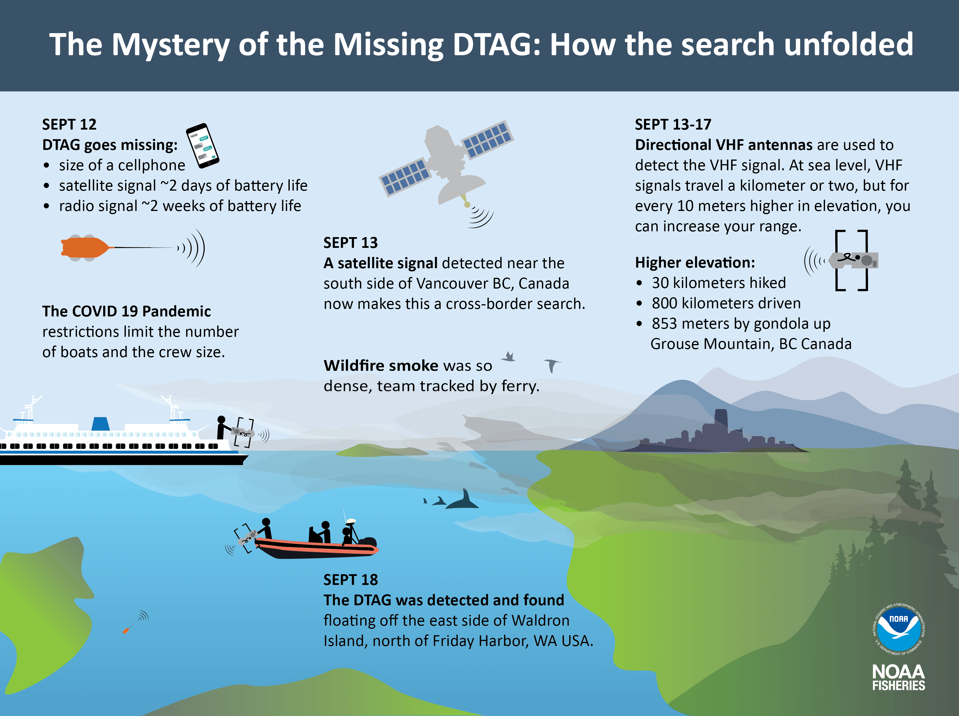 Illustration of the missing DTAG search timeline of events