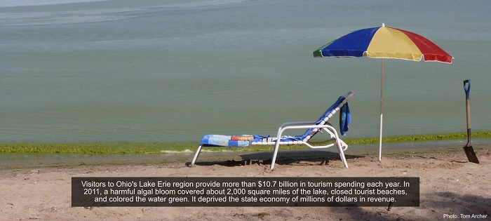 An empty beach chair and umbrella sit by Ohio's Lake Erie waterfront, with green-colored waves lapping the shore. Visitors to this region provide more than $10.7 billion in tourism spending each year. In 2011, a harmful algal bloom covered about 2,000 square miles of the lake, closed tourist beaches, and colored the water green. It deprived the state economy of millions of dollars in revenue.