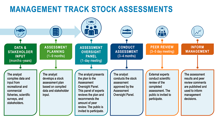 Highlighting step 3 of the Management Track Assessments:  Advisory Oversight Panel