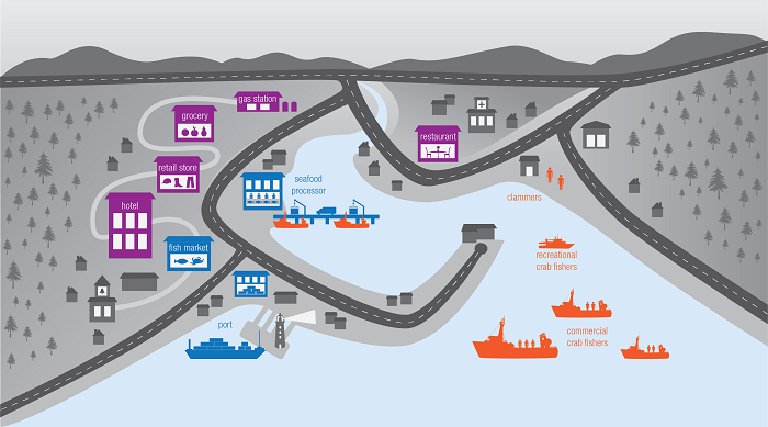 A graphic representation of a generic port town highlights three key sectors of society that are impacted by harmful algal blooms. Within the hospitality/retail sector, a hotel, retail store, grocery story, gas station and restaurant are highlighted. Within the seafood processing sector, the port, a fish market and a seafood processing plant is highlighted. Within the fishing sector, commercial and recreational crab fishers, and clammers are highlighted.