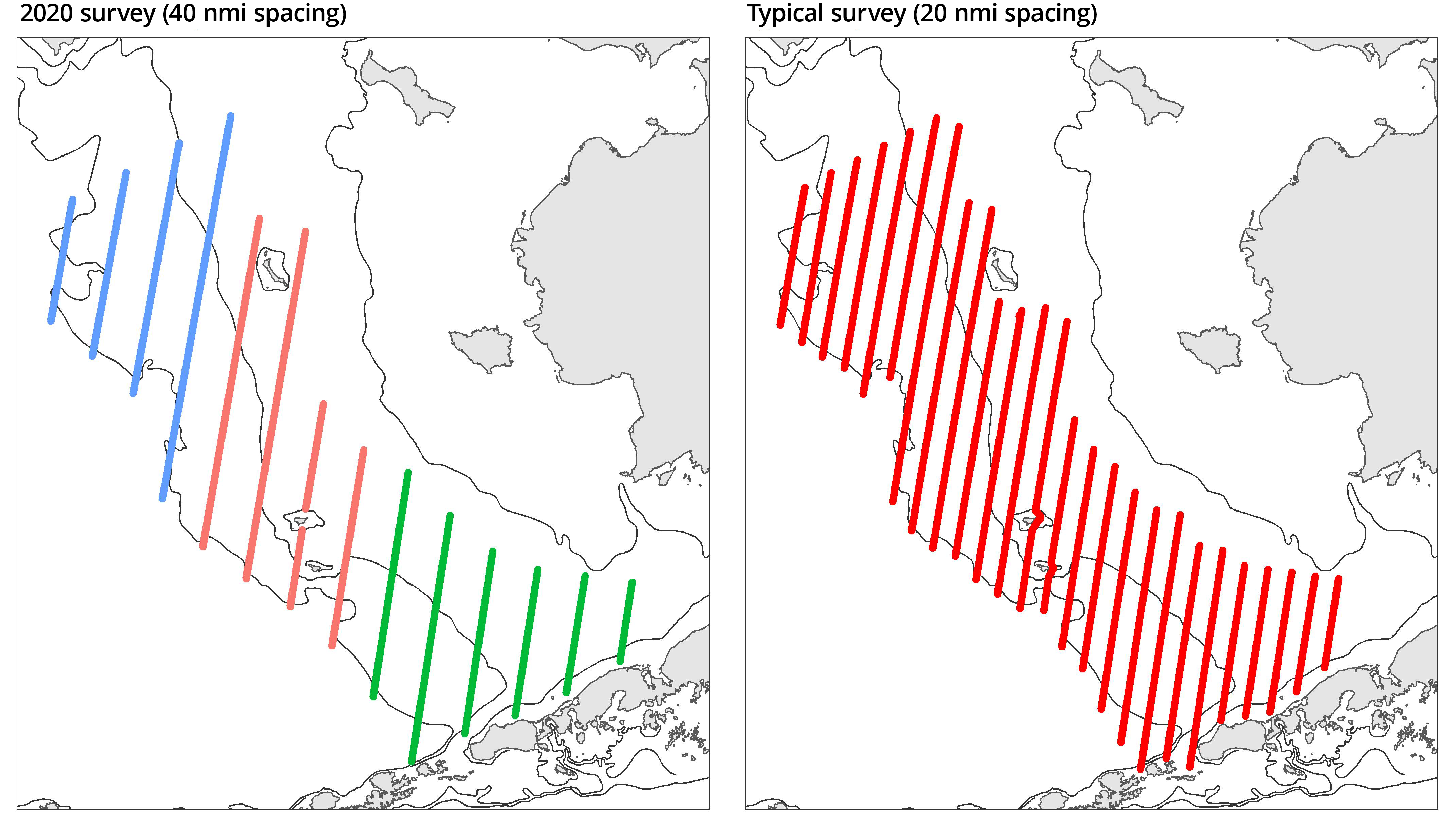 Two maps showing typical and 2020 survey transects in the Bering Sea.