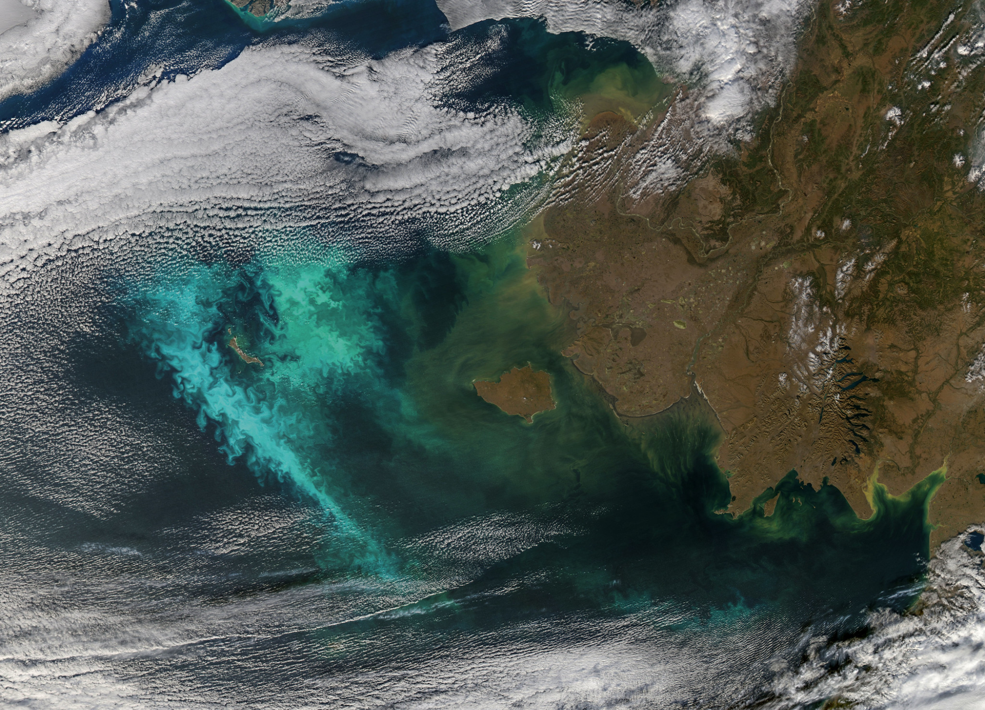 Satellite photo of the Bering Sea showing areas with algal bloom and coastal turbidity.