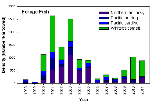 Figure AD-02. Catches of forage fish along the Columbia River and Willapa Bay transects, 1998- present. Note low numbers of forage fish in 2006; note also low numbers in 1999, demonstrating that there can be time lags of at least 1 year following a crash before forage fish numbers begin to increase. Data shown are from the surveys of R. Emmett, conducted May-August 1998-present.
