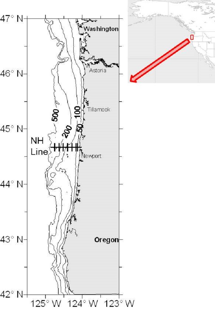 Figure HZI-01. Transects and stations sampled during cruises by the NOAA Fisheries Service.