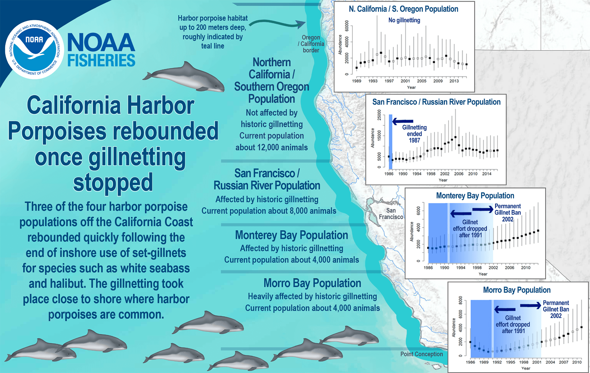 Infographic describing the rebound in the California Harbor Porpoise population