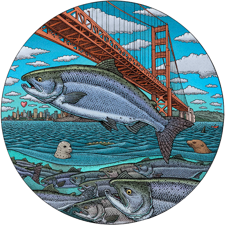 California Salmonscape central image