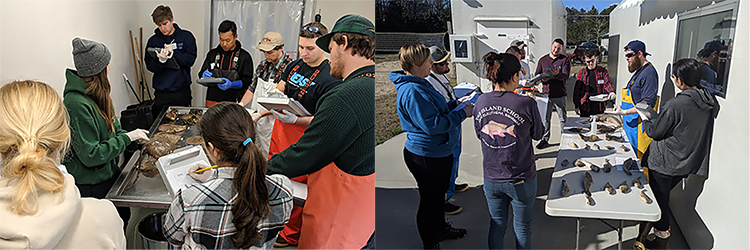 Training in species identification, Candidates and fish on tables.(left) Outdoor class in species identification, fish species laid out on table. (right)