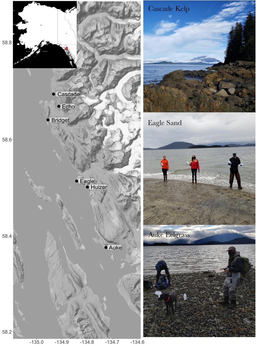 "Map of southeast Alaska sample sites at Cascade, Echo, Bridget, Eagle, Huizer and Auke with three shoreline sample site photos labeled ""Cascade Kelp,"" ""Eagle Sand"" and ""Auke Eelgrass."""