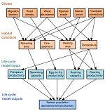 Salmon Habitat Restoration Planning (SHaRP) Model Diagram