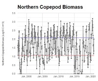 Newport Line Northern Copepod Biomass Data Graph