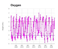 Newport Line Oxygen Data Graph
