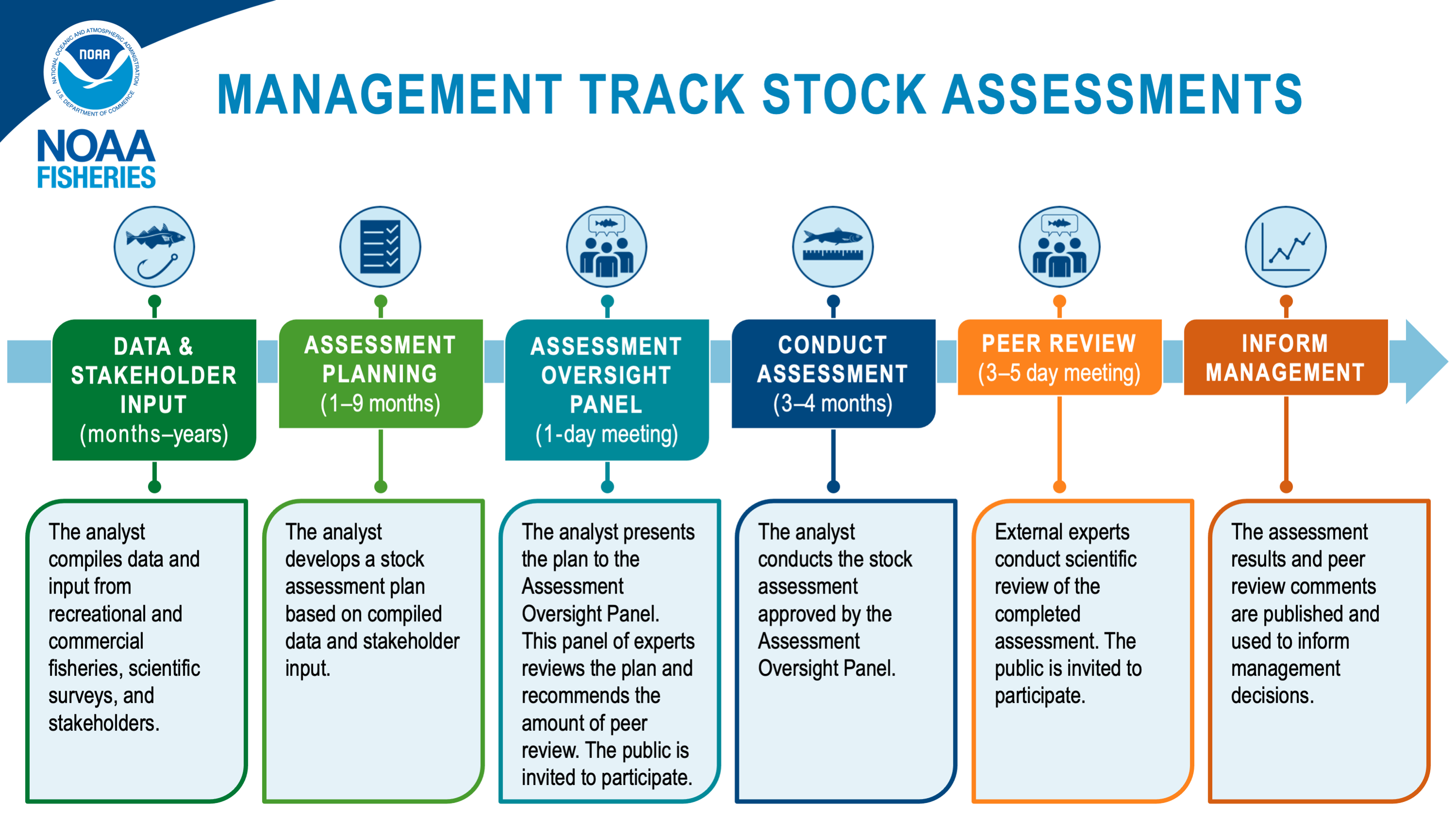 Timeline for management track assessments