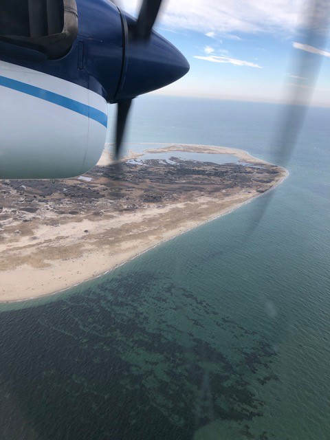 Looking down on the beach at Muskeget Island from the window of the twin otter in flight.