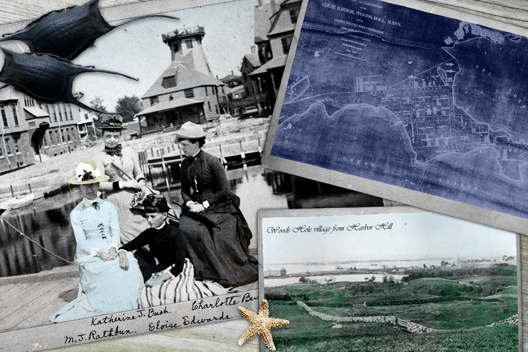 Collage graphic of four women, including Mary Jane Rathbun, sitting on a Fish Commission wharf dock in Woods Hole, Massachusetts, 1880 map of Woods Hole's Great Harbor, landscape image of Harbor Hill looking towards Woods Hole, image of mermaids purses and small starfish.