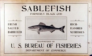 An old U.S. Bureau of Fisheries document showing a picture of a sablefish and promoting its flavor and uses.