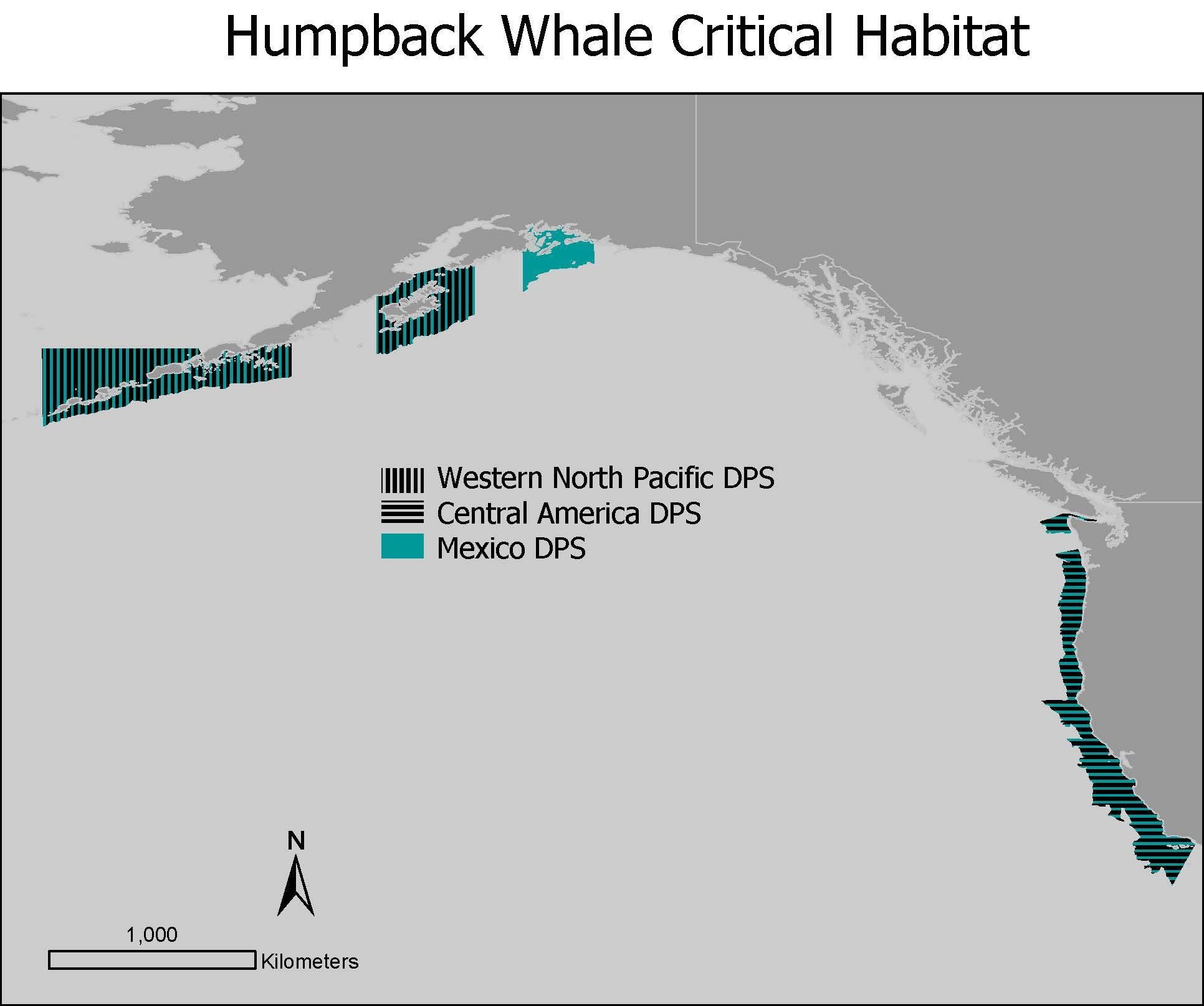 Humpback Whale Critical Habitat