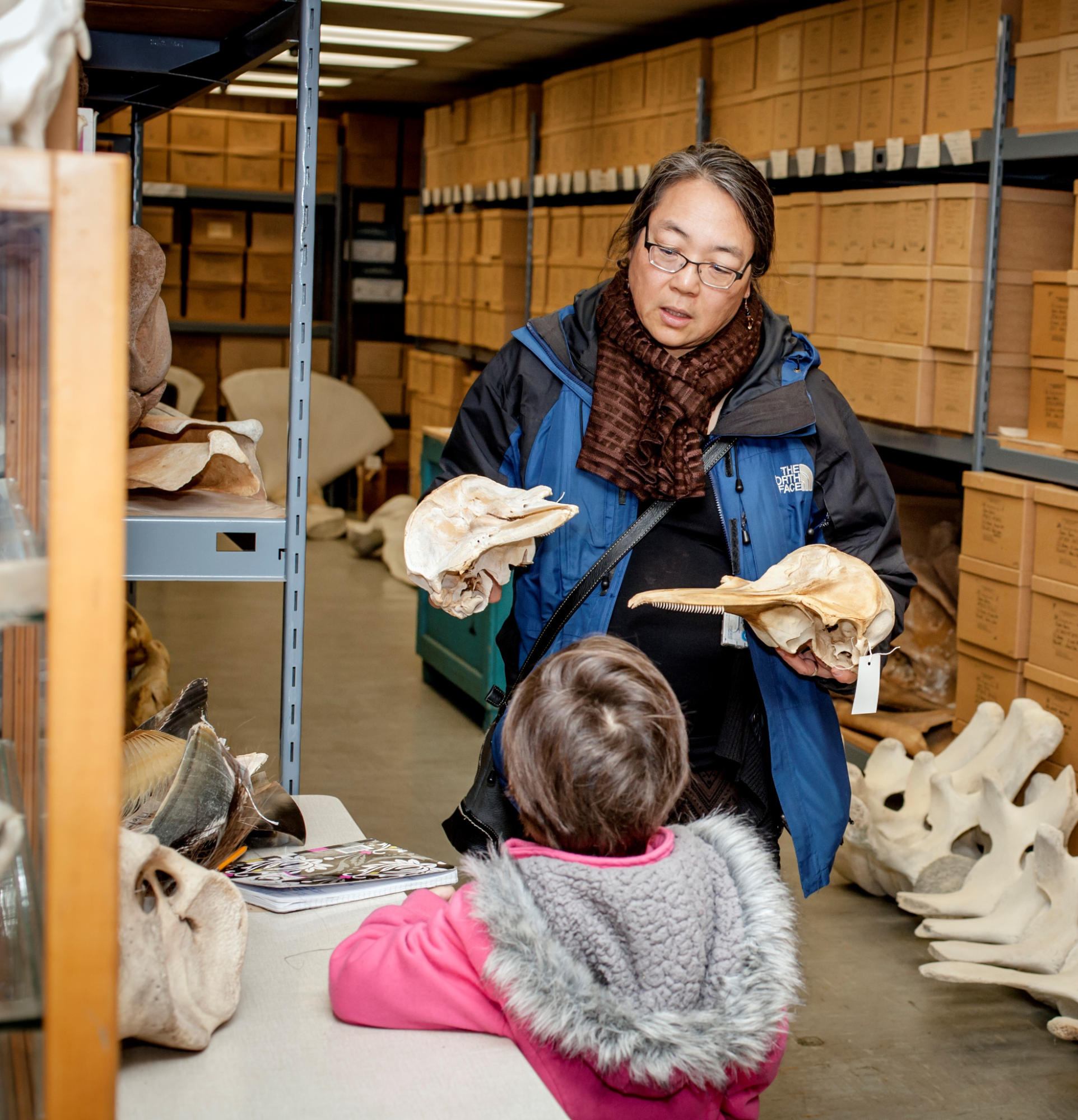 Photo of Lisa Hiruki-Raring holding the skull bones of a marine mammal and talking with a young girl.
