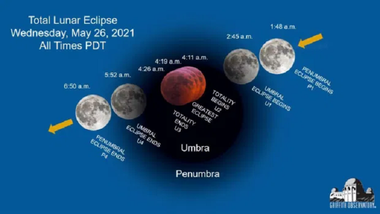Stages of the lunar eclipse. Photo courtesy of Griffith Observatory.