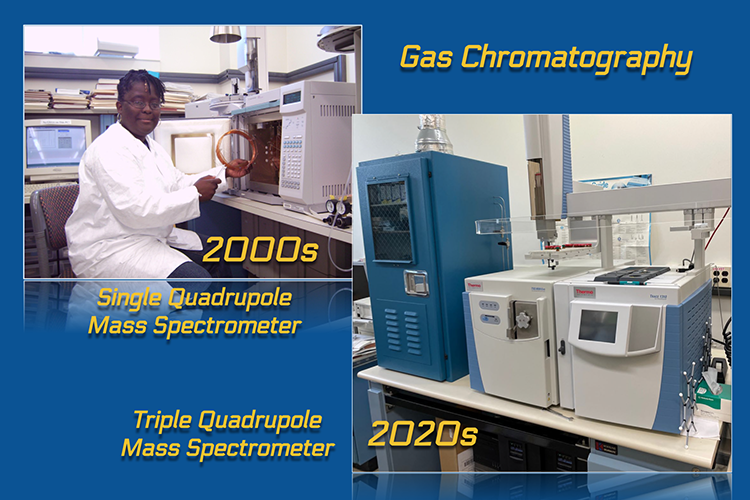 Panel has two images, one at the upper left and another at the lower right. The panel is labeled gas chromatography. . The image at top  left shows a scientist in a lab coat sitting in front of an instrument. The scientist is holding a spool of copper tube. The image is labeled 2000s single quadrupole mass spectrometer. The image at lower  right shows a computerized instrument on a benchtop.The image is labeled 2020s triple quadrupole mass spectrometer.