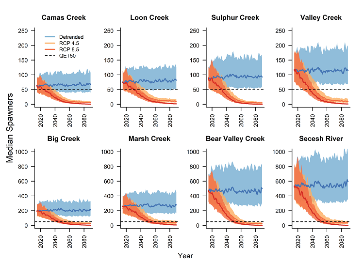 eight graphs showing the number of spawners in 8 populations over time, from 2020 to 2089, for Camas Creek, Loon Creek, Sulphur Creek, Valley Creek, Big Creek, Marsh Creek, Bear Valley Creek, and Secesh River. On average, the number of spawners stays constant over time but when climate change forcing is imposed, all populations rapidly decline below the quasi-extinction threshold.