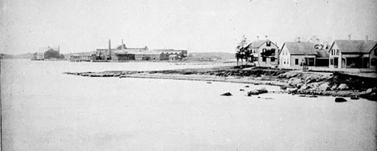 Black and white photo showing low-lying land where the future fisheries lab would be built on the west side of the Great harbor. Several houses are located at right along the street, with the large Pacific Guano Company factory and facilities on the west side of the harbor visible in the background.