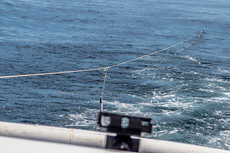 A single line with baited hooks hung at set intervals is trailing the vessel. Hooks closest to the vessel are above the water and visible.