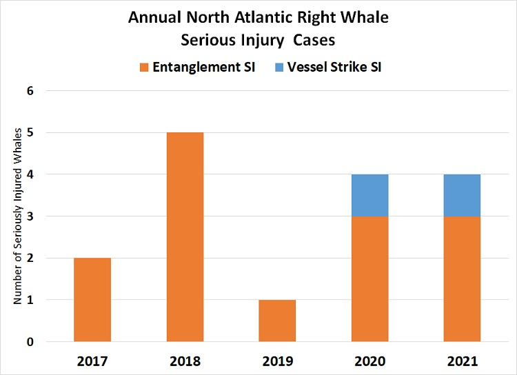 Graph of Annual North Atlantic Right Whale Serious Injury Cases