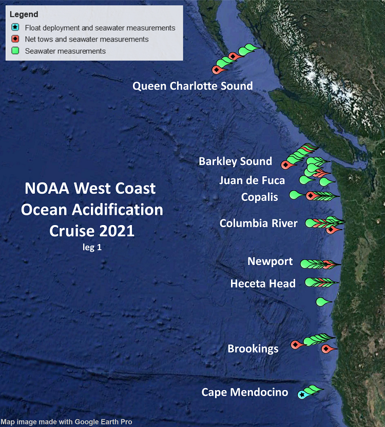 This map shows the location of transect lines sampled during the 2021 West Coast Ocean Acidification Cruise. Measurements taken in coastal Washington and Oregon waters confirm a large area of bottom water with low dissolved oxygen levels. Credit: NOAA Pacific Marine Environmental Laboratory
