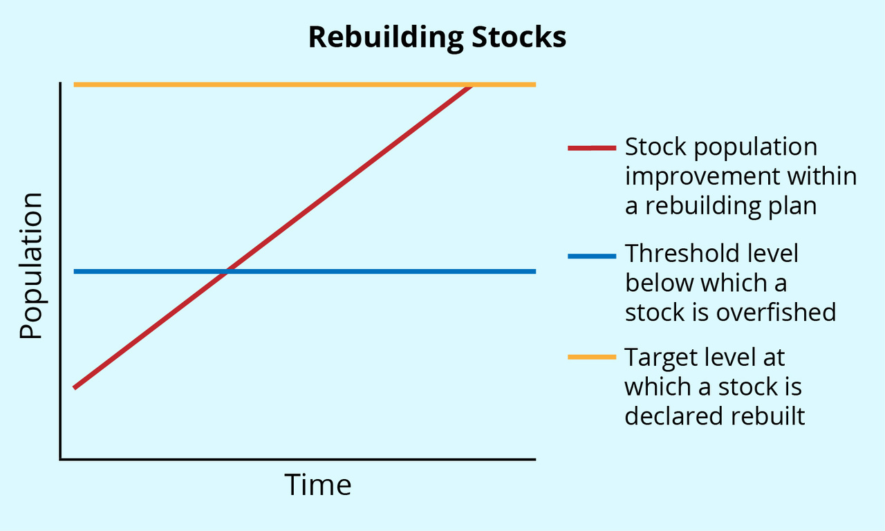 Graph illustrating the concept of a rebuilding stock