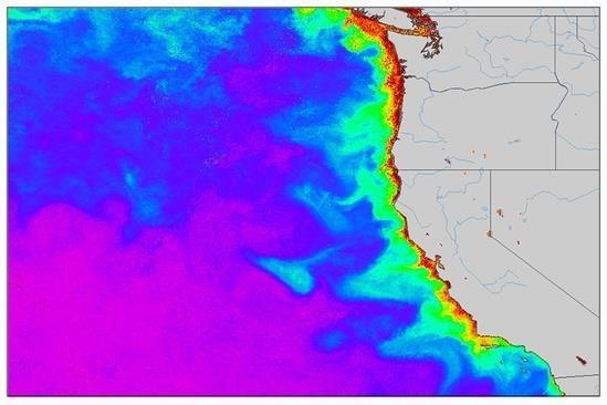Ocean Productivity.jpg