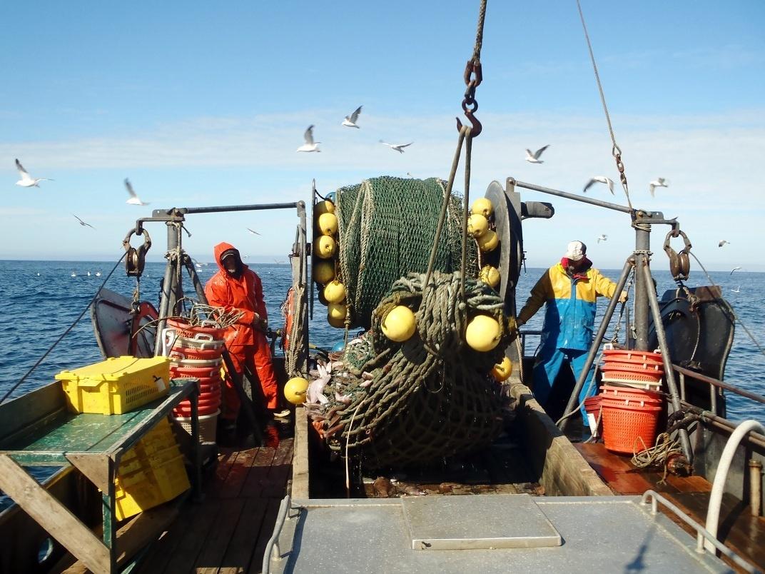 1072x804-commercial-trawlnet-sf.JPG