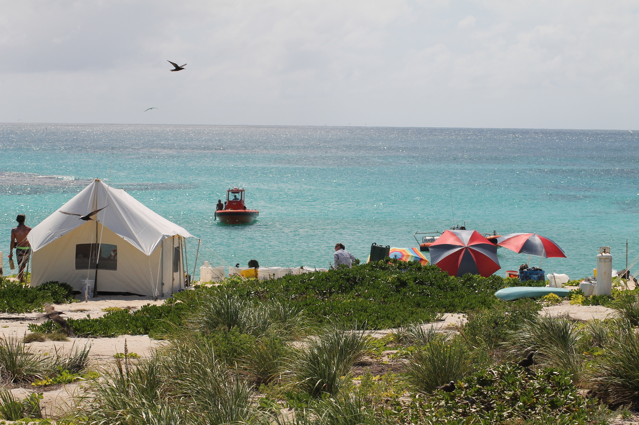Field camp set-up at Laysan Island