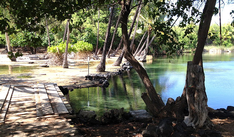 fishpond-activities-in-west-hawaii-3A-500x467.jpg