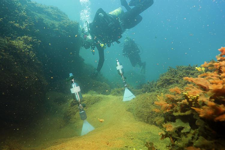 Scientist in dive suit measuring carbon dioxide.