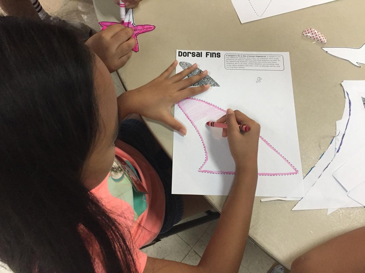 A Camp Maga'lani student creates her unique dorsal fin.