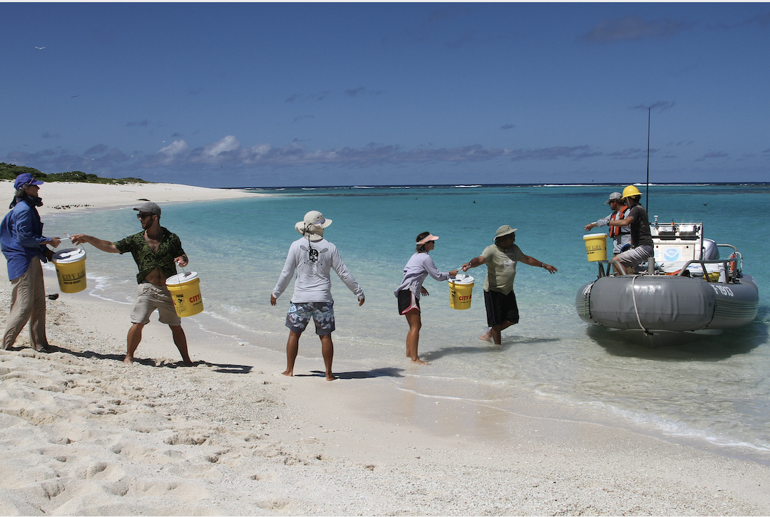 Field team members stand in chain to offload buckets from boat to shore.