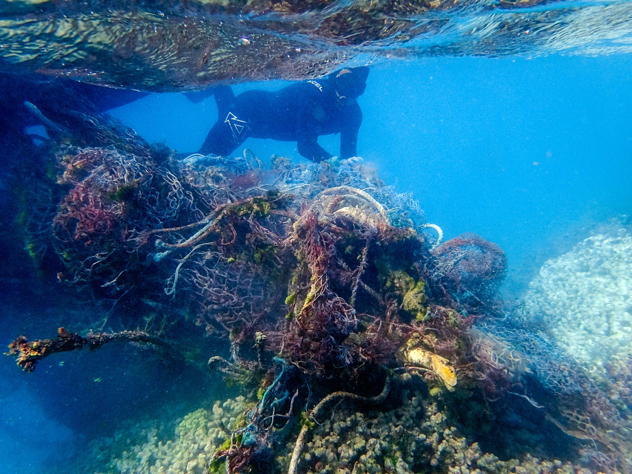 James Morioka dives down to carefully remove a monster net from the reef at Pearl and Hermes Atoll