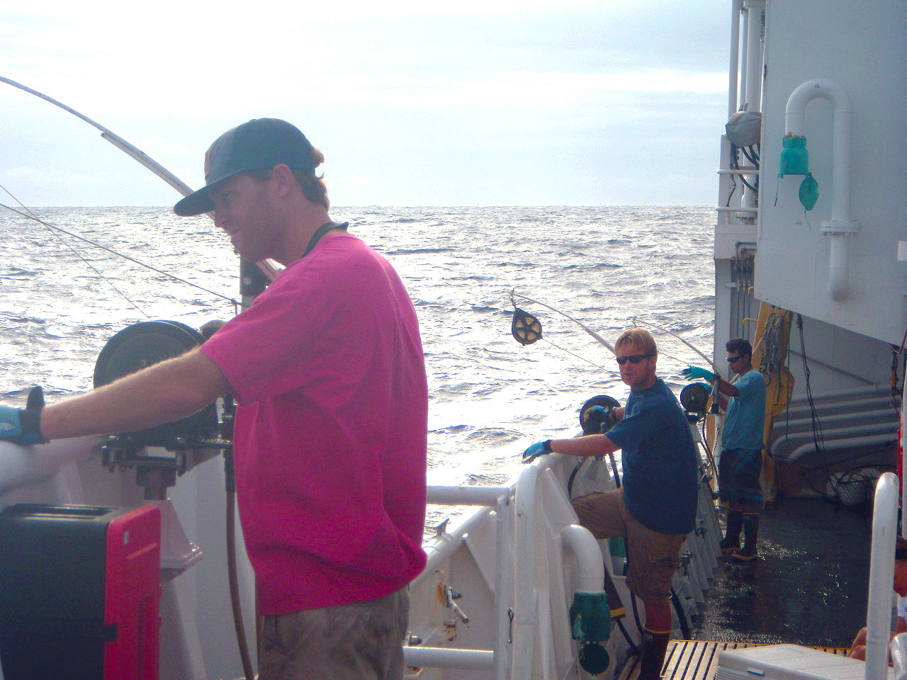 Bottomfish sampling from the NOAA ShipSette.