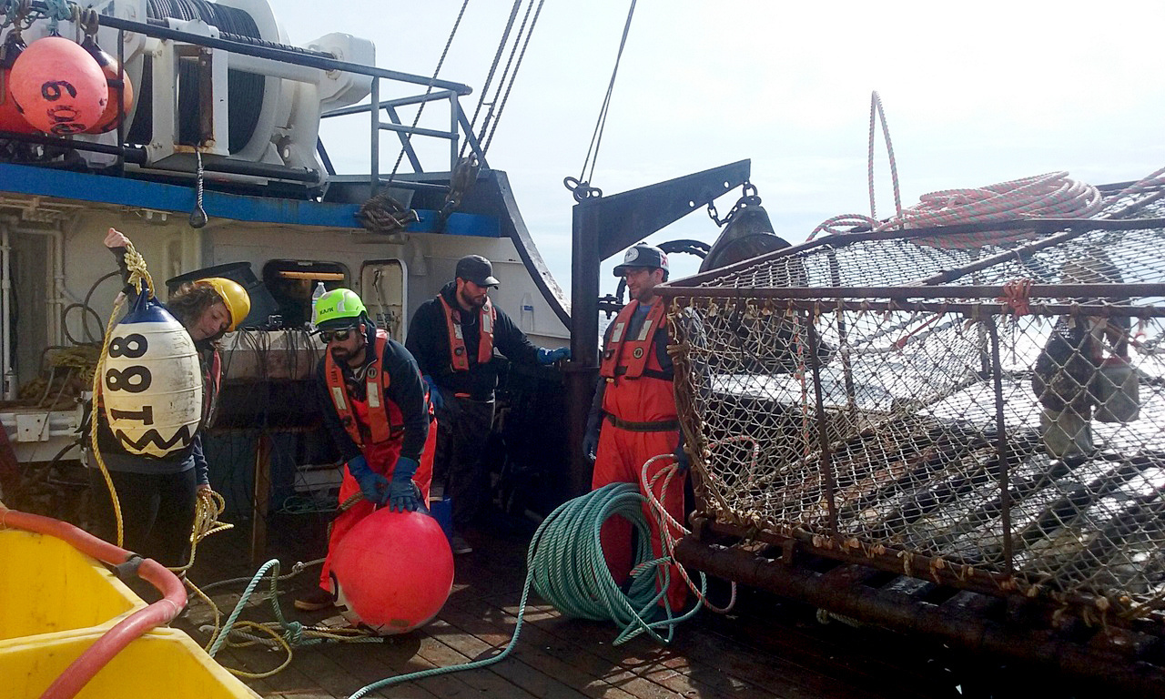 Crab pot ready to be launched to catch red king crab for the study.