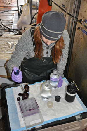 EMA_Oceanography_Alaska_PProd Inoculating.jpg