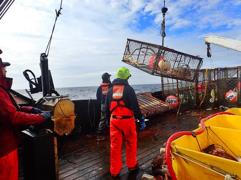 Moving crab pot to launch.